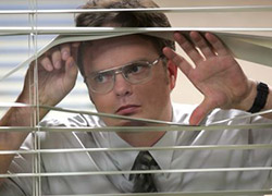 How to start a new job: Dwight's look on office culture