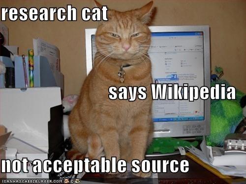 college memes: wiki cat