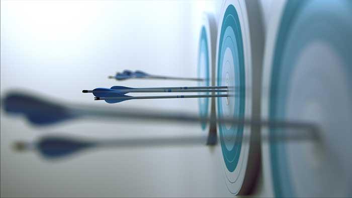 academic goals target